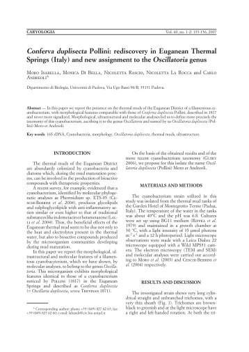 rediscovery in Euganean Thermal Springs