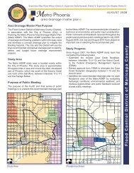 Metro Phoenix Area Drainage Master Plan - Flood Control District of ...