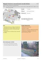 (Verlinkung auf das MB 10) [PDF, 2.00 MB] - Gemeinde Zumikon