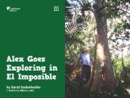 PDF - Rainforest Alliance