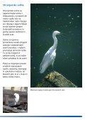 Strunjanske soline - Natura 2000 - Page 3