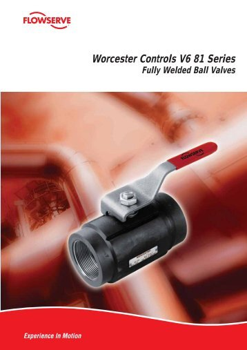 Worcester Controls V6 81 Series