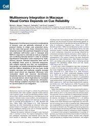 Morgan et al. 2008 - Brain and Cognitive Sciences - University of ...