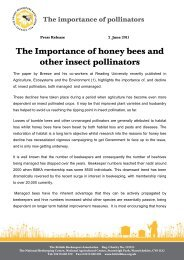 The Importance of honey bees and other insect pollinators - British ...