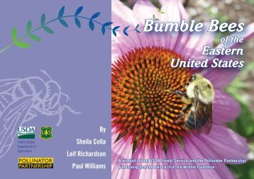 Bumble Bees of the Eastern United States - USDA Forest Service