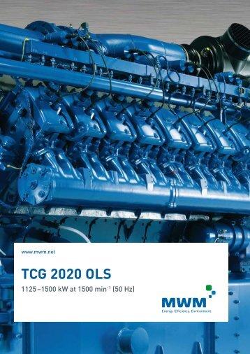 TCG 2020 OLS - LT