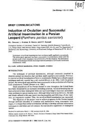 Induction of ovulation successful artificial Insemination in a Persian ...