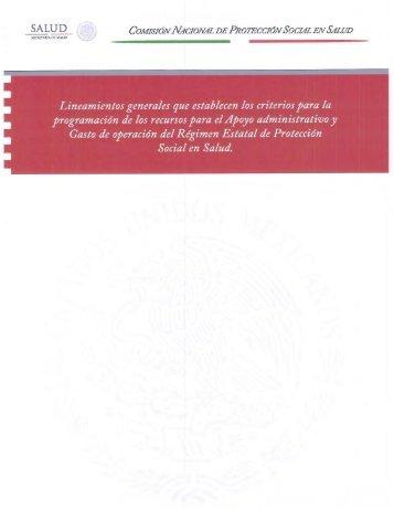 Lineamientos Generales que establecen los criterios para la ...