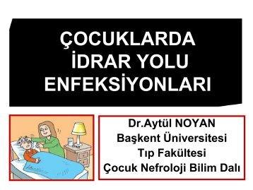 IDRAR YOLU ENFEKSIYONU.pdf