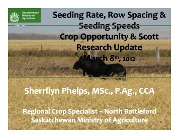 Seeding Rate, Row Spacing & Seeding Speeds - SaskCanola