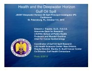 Health and the Deepwater Horizon Gulf Oil Spill - College of Marine ...