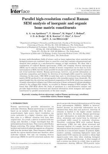 Parallel high-resolution confocal Raman SEM analysis of inorganic ...