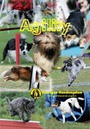 Agility - Sveriges Hundungdom