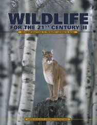 Wildlife for the 21st Century: II - USDA Forest Service