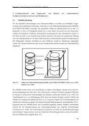5 Untersuchungen zur Liberation von Biotin aus verschiedenen