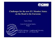 Challenges for the new EU Member States on the Road to the ...