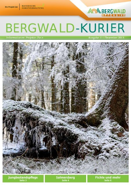 Download - Bergwald Offensive