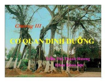 Chuong 3 (Re).pdf
