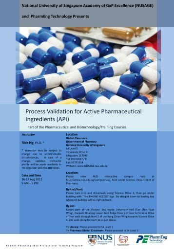 Process Validation for Active Pharmaceutical Ingredients - NUSAGE ...