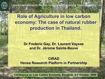 C sequestration in rubber plantation