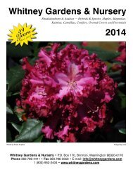 Download the Catalog! - Whitney Gardens & Nursery