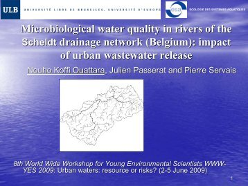 Microbiological water quality in rivers of the Scheldt ... - LEESU
