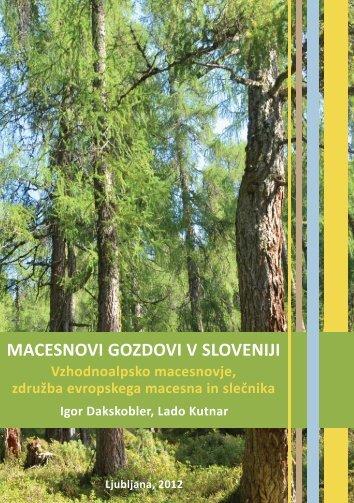 Macesnovi gozdovi v Sloveniji - Gozdarski inštitut Slovenije