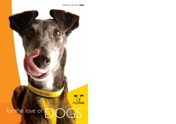Download the 2008 Annual Revie - Dogs Trust