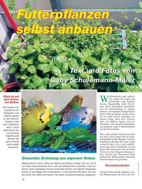 Leseprobe: Der Artikel als PDF (1,37 MB) - Birds Online