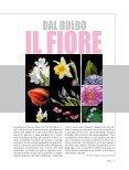 Florisemozioni in fiore - Pernice editori - Page 7