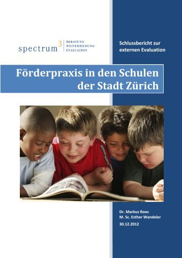 3 Förderpraxis in den Schulen der Stadt Zürich