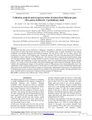 Collection, analysis and cryopreservation of semen from Malayan gaur
