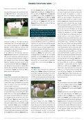 lig ht - GGI German Genetics International GmbH - Page 2