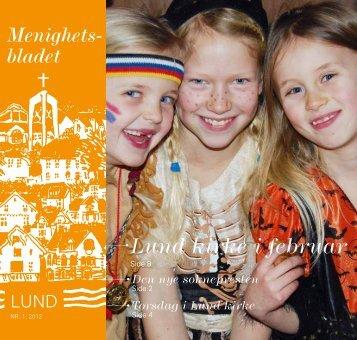 Lund kirke i februar - Mediamannen