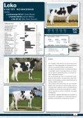 catálogo de toros - probados con hijas - GGI German Genetics ... - Page 5