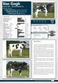 catálogo de toros - probados con hijas - GGI German Genetics ... - Page 7