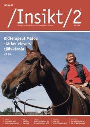 Insikt nr 2, 2009 (pdf 1,3 MB) - Falu Kommun