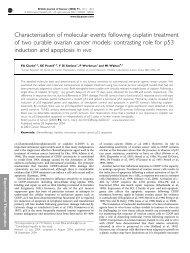 Characterisation of molecular events following cisplatin treatment of ...