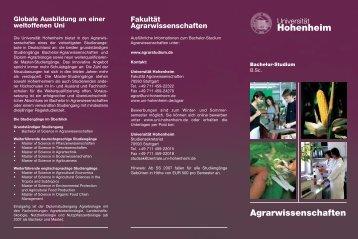 PDF-Datei - STUDIUM