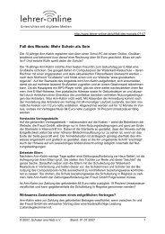 Fall des Monats Juli 2007: Mehr Schein als Sein