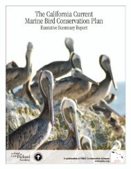 The California current marine bird - Gulf of the Farallones National ...