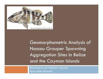 Geomorphometric Analysis of Nassau Grouper Spawning ...