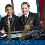 Strategic Plan for 2011-2014 - Mount Carmel College
