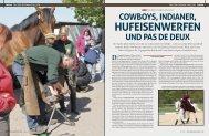 """""""Tegelhof"""" in Sehlen - Mecklenburger Pferde"""