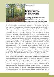 Freiheitsgrade in die Zukunft - Nachhaltige Waldwirtschaft
