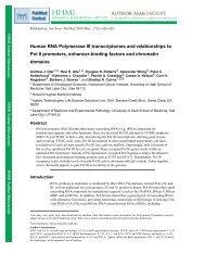 Human RNA Polymerase III transcriptomes and ... - University of Utah