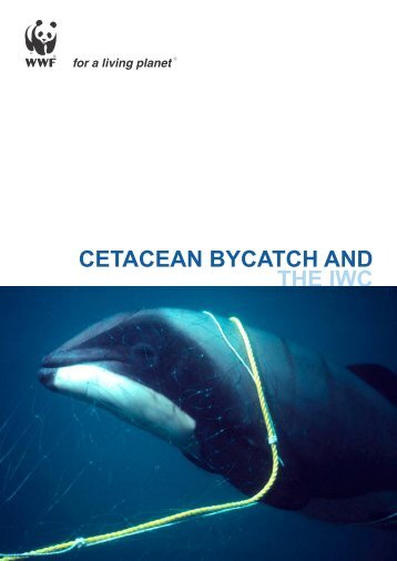 CETACEAN BYCATCH AND THE IWC