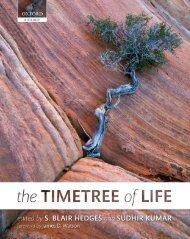 PDF - TimeTree