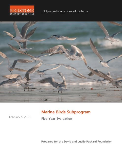 Marine Birds 5 Year Evaluation - Executive Summary - Packard
