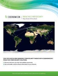 proactive cyber security brochure - Codenomicon